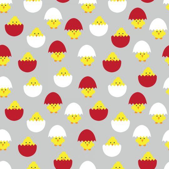 καραβόπανο αυγά κοτοπουλάκια