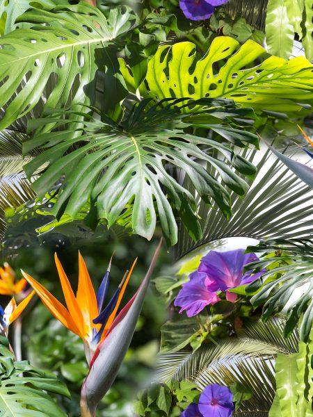 αλέκιαστο ύφασμα Floral clip art με χρώματα Τροπικό φόντο με φοίνικα, μπανάνα, φύλλα άνθη λουλουδιών