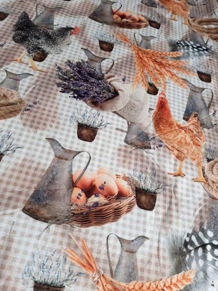 αυγά κότες κουζίνα